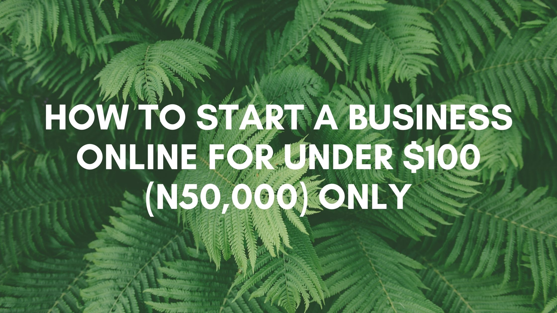 How to start a business online for under $100 (50,000) Only
