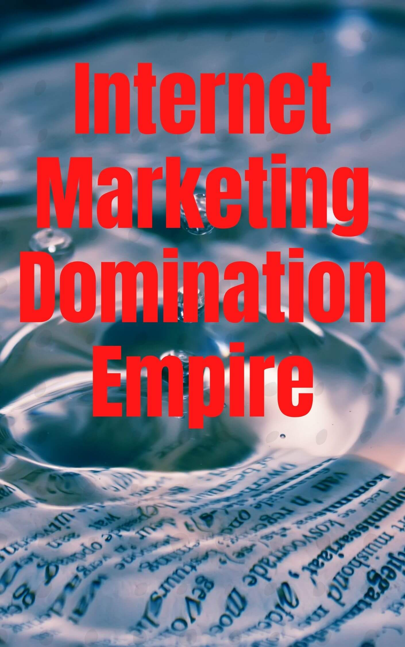 Internet Marketing Domination Empire Cover